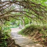 Os caminhos que levam para Inhotim: Dicas de transporte e hospedagem