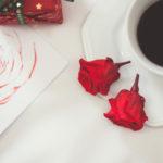 Rosa Eterna é a sugestão de presente de Mundo de Anna para o Natal